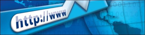Should you get a expert-designed or home-made website?